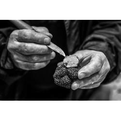 Atelier vin et truffe (4...